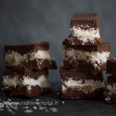 Raw coconut and chocolate bars-4_Featured