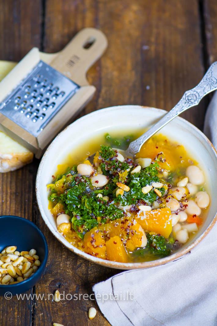 ziemiska moliugu ir pupeliu sriuba