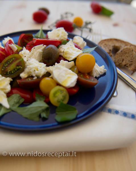 pomidoru ir mocarelos salotos