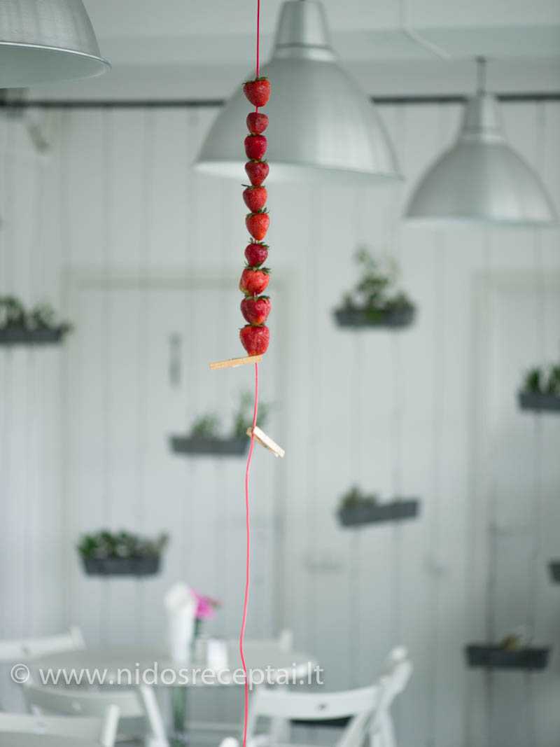 Svečius pasitiko iš palubių kabančios braškių privertos virvutės:)