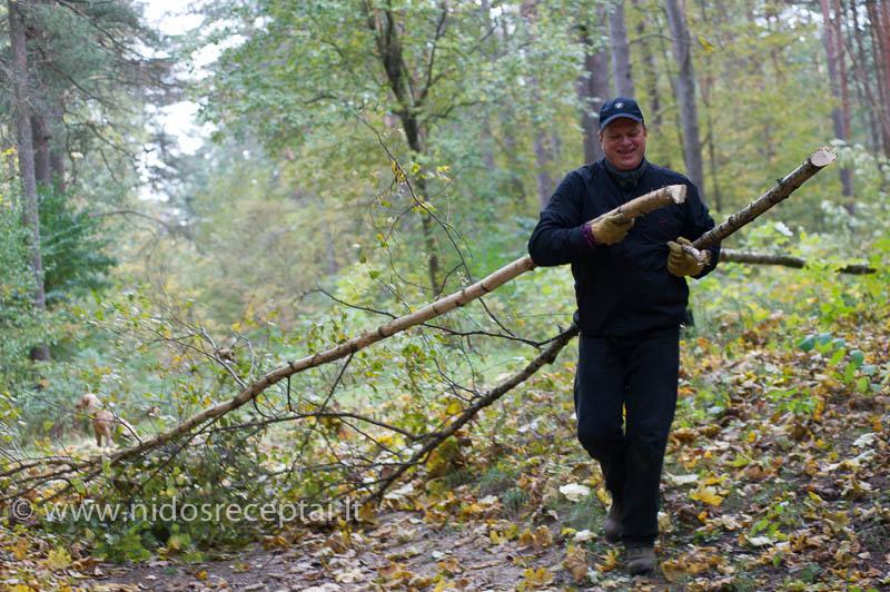 Miško tvarkymas - kasmetinis kaimynų renginys