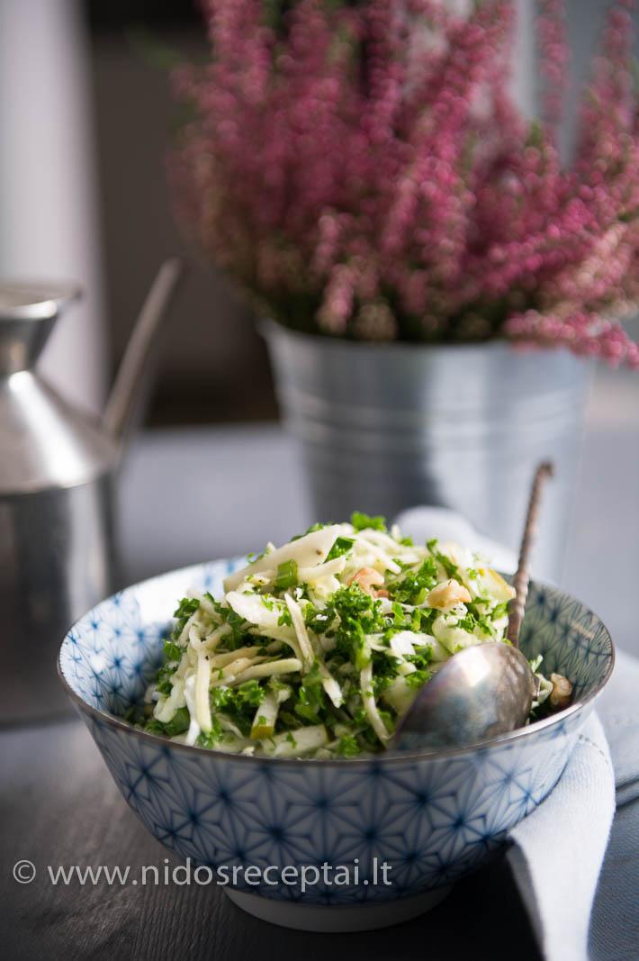 Žalios spalvos salotos - vitaminų komplektas visiems valgytojams