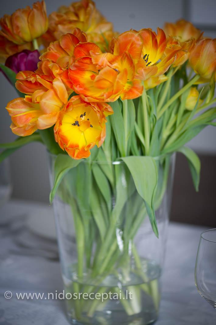 Tulpės man - gražiausios gėlės!