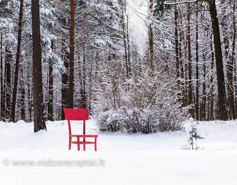 Winter in spring-20_Horizontal