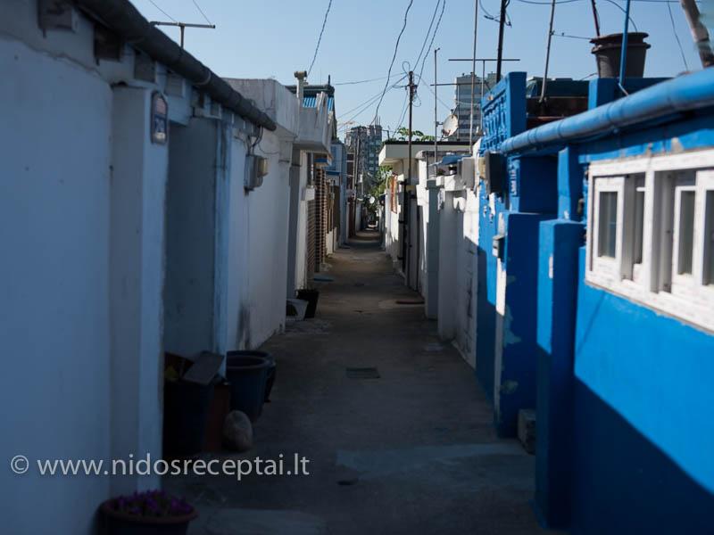 Sokčio - senutėlis žvejų kaimelis su tokio siaurumo gatvėmis tarp miniatiūrinių namelių