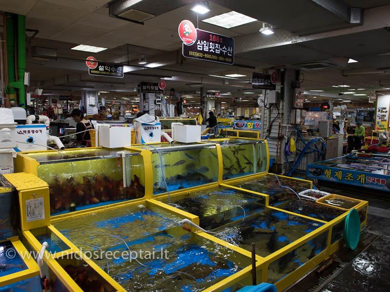 Sokčio garsėja geriausiomis ir šviežiausiomis žuvimis