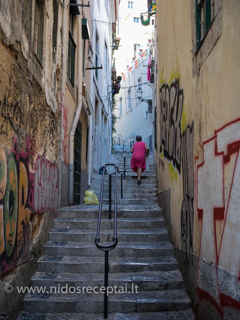 Alfama - seniausias Lisabonos rajonas