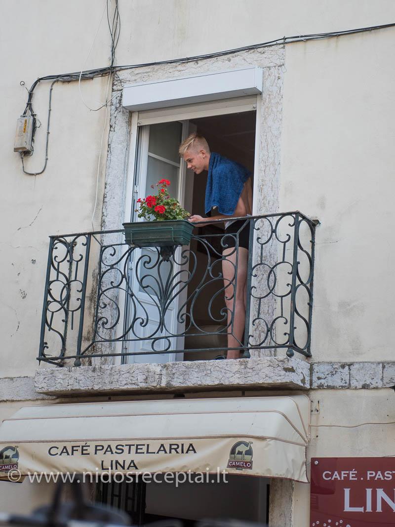 Visas gyvenimas - languose ir balkonuose
