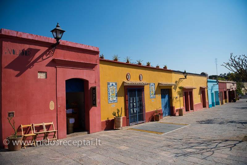 Oaxaca spalvos